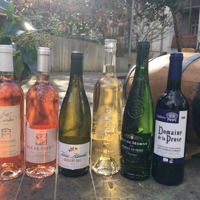 Weinprobe Rosé und Weißeweine