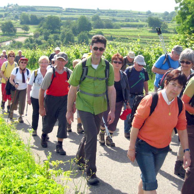 Partnerschaftswanderung im Schwarzwald